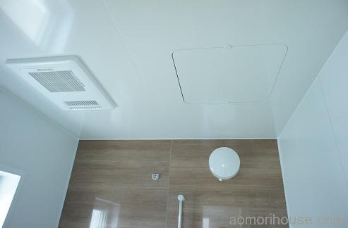 お風呂天井と照明