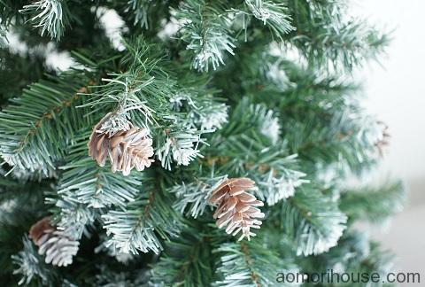 クリスマスツリー松ぼっくり前