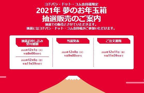 ヨドバシカメラ袋袋2021年